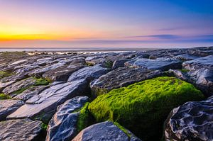 "The ""Green"" van Richard Guijt Photography"