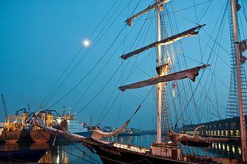 Thalassia in de haven van Scheveningen van Jacintha Van beveren