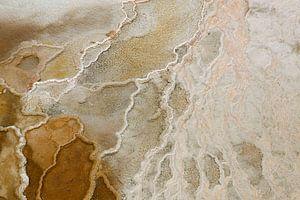 Detail Mammoth Hot Springs van
