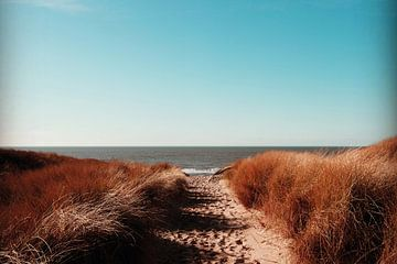 Walking the Dunes old style van Lynlabiephotography