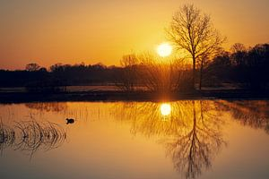 Lever du soleil sur Gerard van der Wal