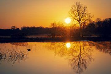 Sonnenaufgang von Gerard van der Wal