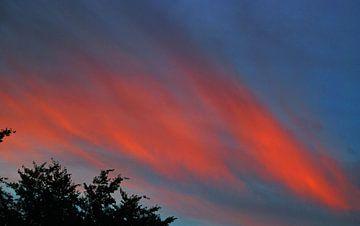 Feestje in de lucht van Luc van Alphen