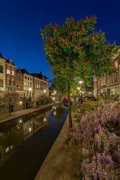 Lente aan de Oudegracht in Utrecht. van André Russcher