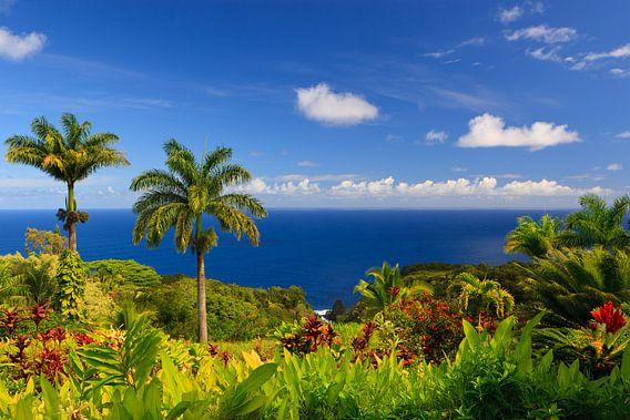 Garten Eden, Maui, Hawaii