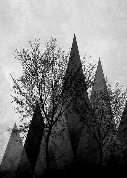TREES VId van Pia Schneider