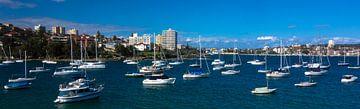Manly Bay-Sydney von Tessa Louwerens