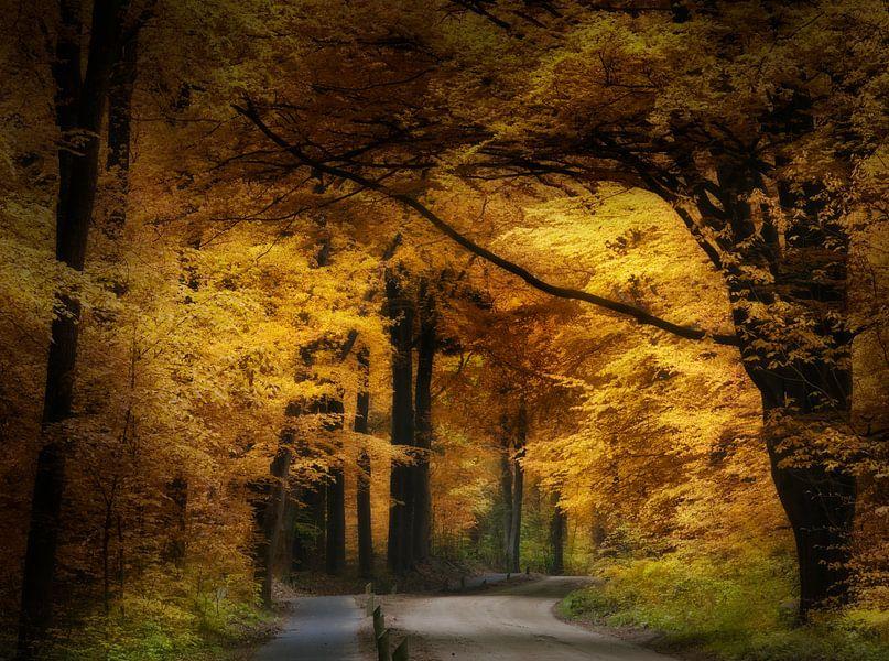 Heaven Can Wait van Kees van Dongen