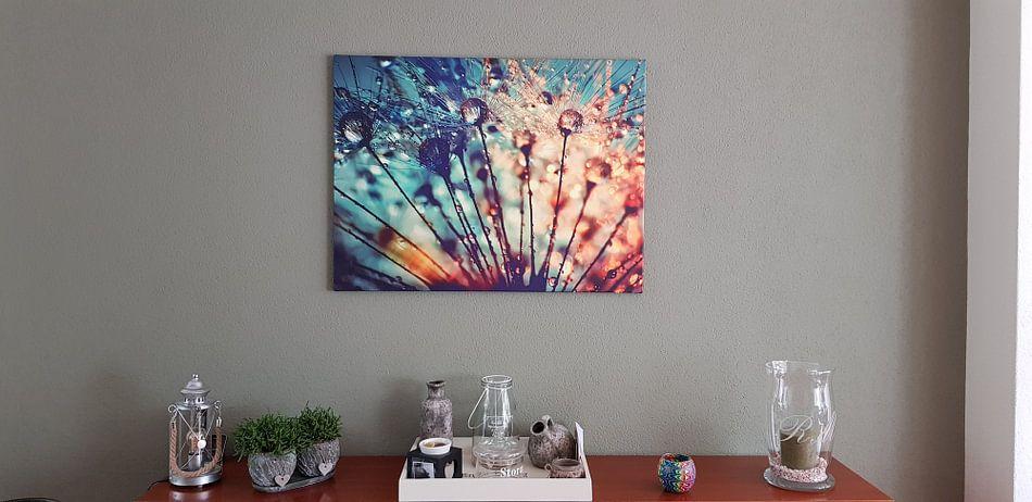 Kundenfoto: Pusteblume Tautropfen  von Julia Delgado