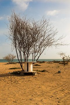 Strand Kaapverdie van Jehee Fotografie