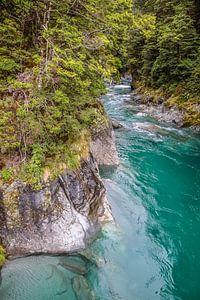 Blue Pools bij Haast Pass, Nieuw Zeeland