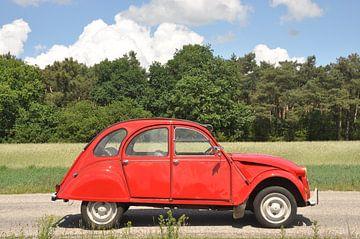 Citroën 2cv in de zon van Theo Joosten