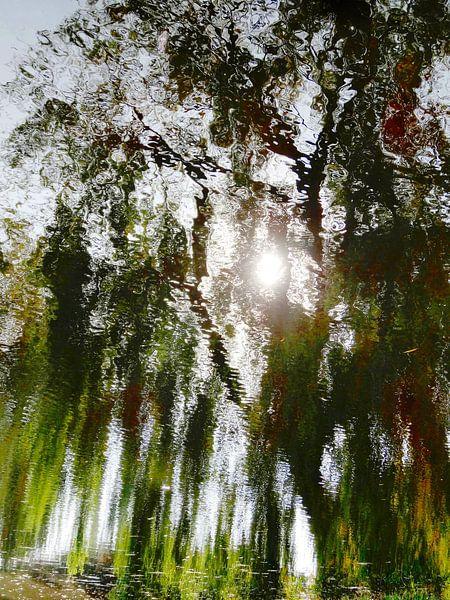 Tree Magic 51 van MoArt (Maurice Heuts)