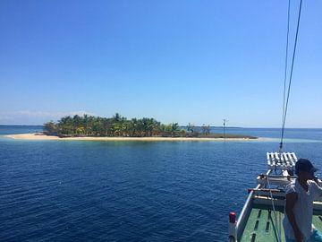 Robinsons Insel von Christine Volpert