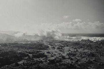 Mystic Coast von Jacqueline Lemmens