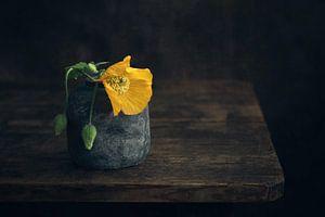 Modern stilleven van Oranje papaver van Silvia Thiel