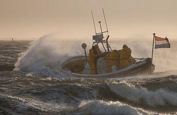 Paardenreddingsboot Abraham Fock van Ameland van