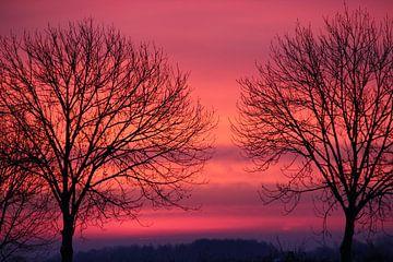 Sonnenaufgang von Wilma Overwijn