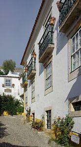 Een pittoresk steegje in de kleine stad Óbidos van Berthold Werner