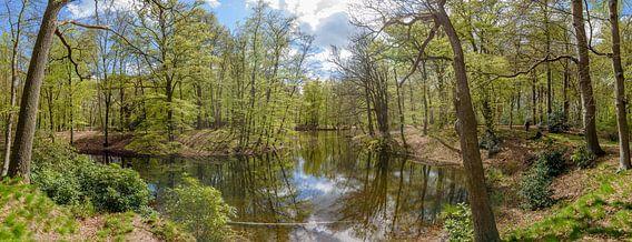 groot panorama van de vijver op landgoed Spanderswoud in 's-Graveland, Wijdemeren, Nederland van Martin Stevens