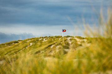 Landscape with dunes on the North Sea island Amrum, Germany van