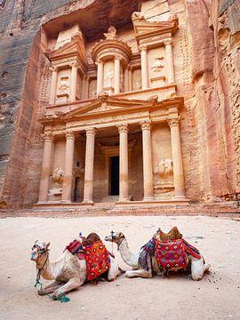 De schatkamer van Petra, wereldwonder in Jordanië van Teun Janssen