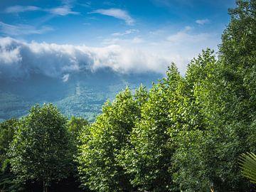 Paysage de brouillard dans les montagnes sur Martijn Tilroe