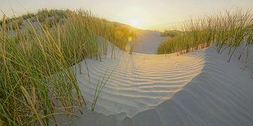 Zon komt op! van Dirk van Egmond