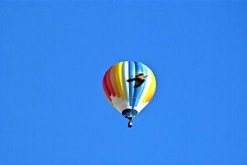 Hete lucht ballon met duif van Norbert Sülzner
