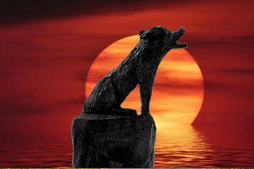 Volle Maan Wolf van Edgar Schermaul