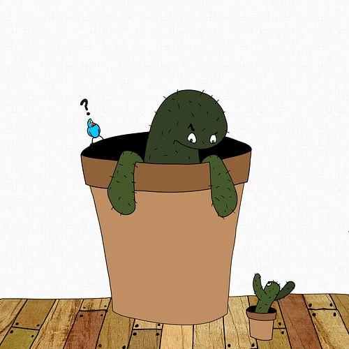Cactussen van