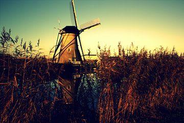 wind milld von Francisco de Almeida