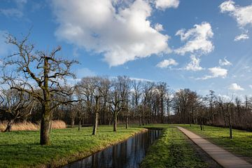 Schöner bewölkter Himmel über dem Obstgarten in Bredius, Woerden