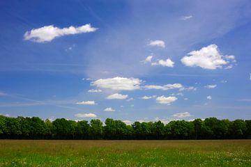Landschaft von Thomas Jäger