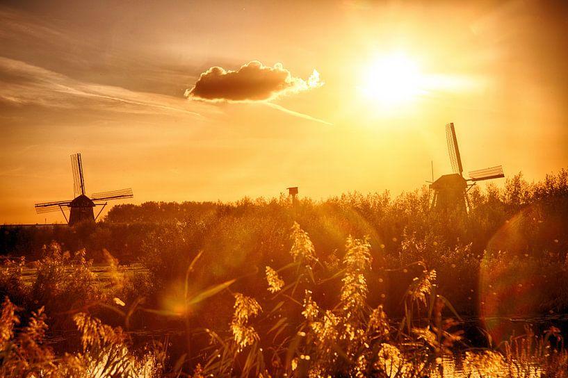 Kinderdijk Mühlen im Sonnenuntergang von Pierre Wolter