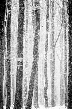 Door de bomen van peter reinders