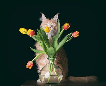 Wodan en zijn tulpen van mirka koot