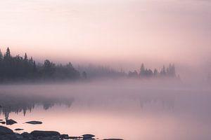 Ochtend mist van