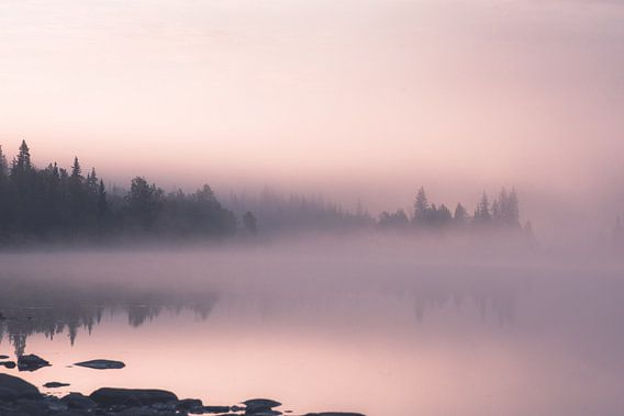 Ochtend mist van Kimberley Jekel
