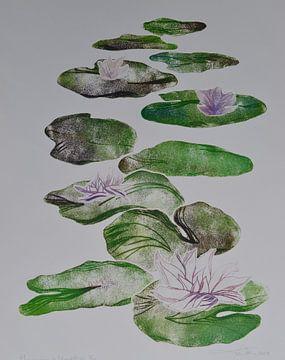 Waterlelies van Frank van Veen