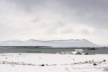 Hverfell vulkaan - IJsland van Barbara Brolsma
