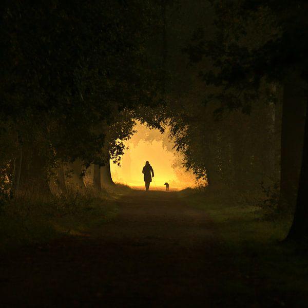 walking the dog sur bob van den berg