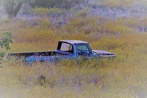 Oude Amerikaanse auto in bloemenveld van