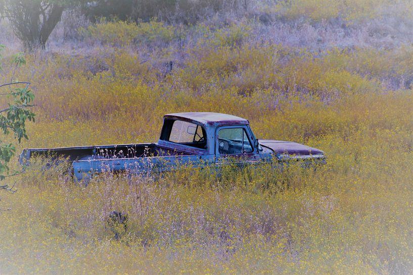 Oude Amerikaanse auto in bloemenveld van Paul Franke