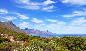 Coast of South Africa