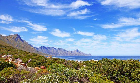 Südafrikas Küste von W. Woyke