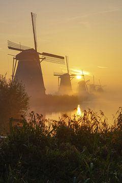 Een prachtige morgen bij Kinderdijk en zijn molens von Dirk van Egmond
