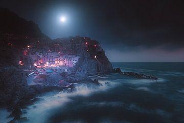 Manarola, Nationalpark Cinque Terre (Italien) von Yannick Lefevre