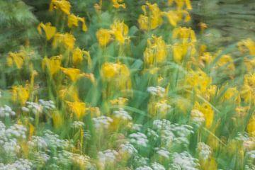Wuiven in de wind van Karin Riethoven