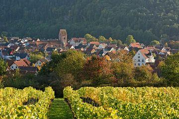 Dorfprozelten am Main von Gisela Scheffbuch
